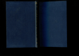 Deník spisovatelův za rok 1880-1881