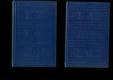 Deník spisovatelův za rok 1876 - 2 svazky